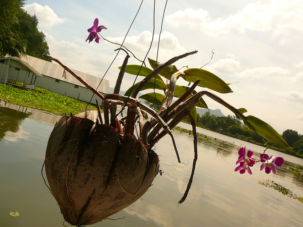 Kway river, Kanchanaburi, Thailand