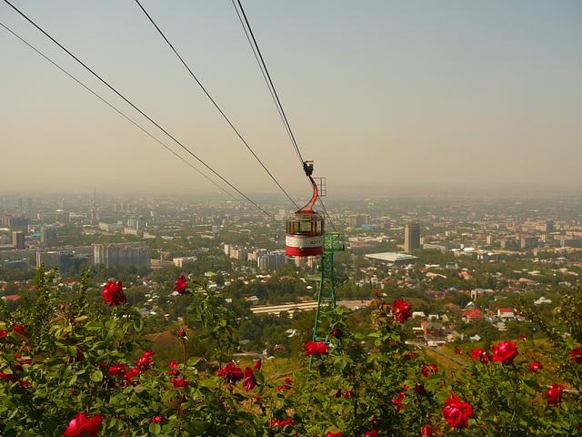 Кок-Тюбе, Алматы