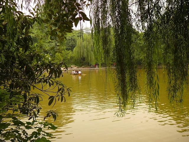 Китай, Ченду