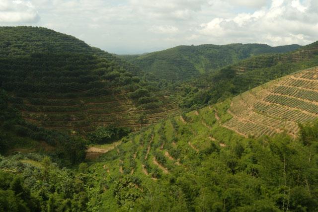 граница Китай - Лаос