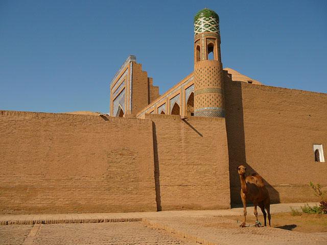 Хива, Верблюд