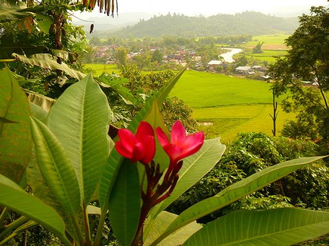 Луангнамтха, Лаос