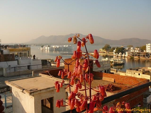 Бюджетное жилье в Удайпуре, Индия