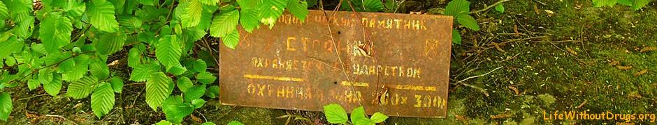 Псынако 1, подземный дольмен, Храм Солнца, Анастасиевка