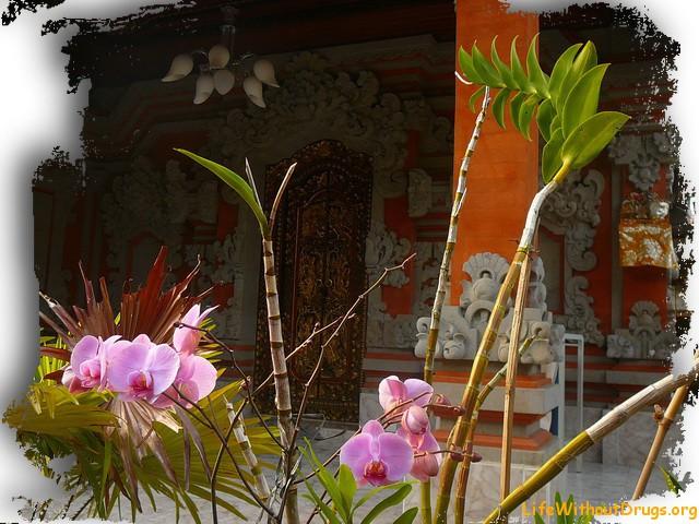 Устройство балийского дома
