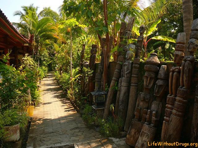 Жилье на севере Бали - Ловина