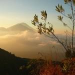 Как поехать самостоятельно на Бали?