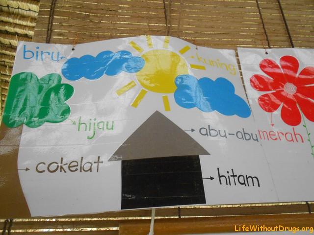 greenschool, Бали