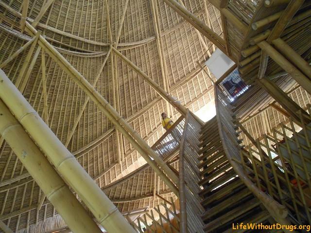 Обучение в зеленой школе на Бали