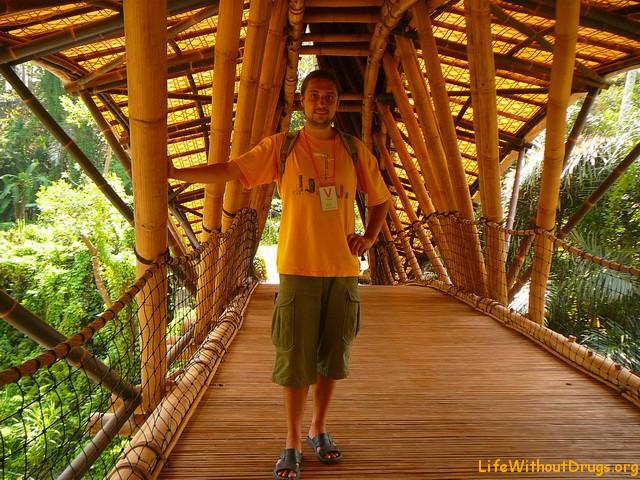 Грин скул, Бали
