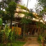 Зеленая школа на Бали — воплощенная идея будущего.