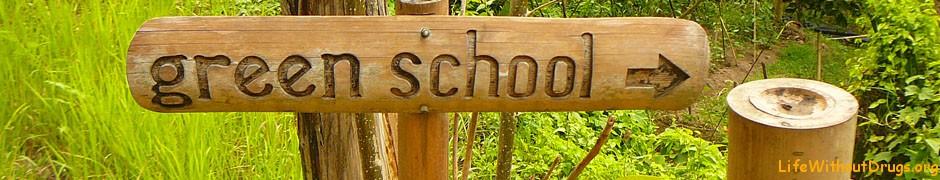 Зеленая школа на Бали