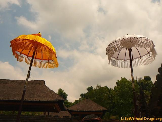 Факты о Бали