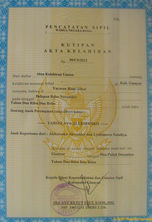 Получить документы для россиянина рожденного в Индонезии