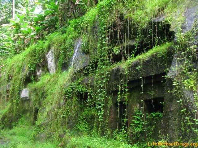 Кельи монахов в Гунунг Кави