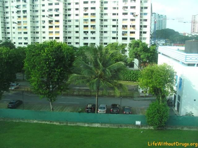 Вид из окна отеля на Сингапур
