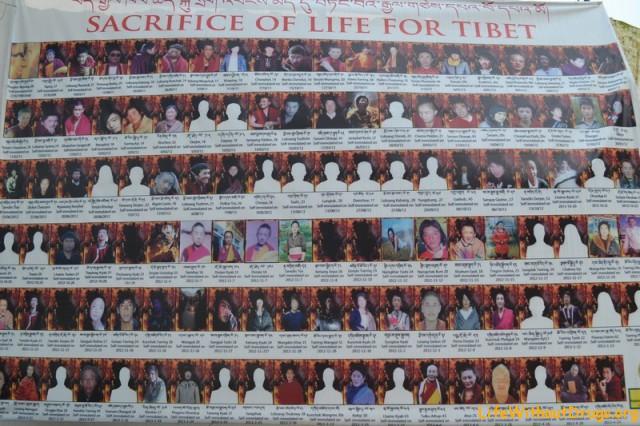 Самосожжения в Тибете