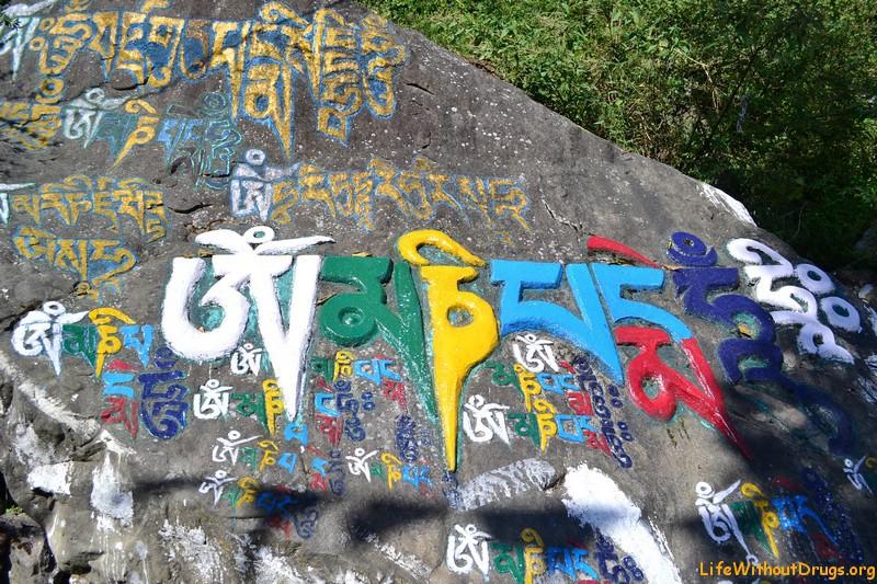 Дарамсала, индийский Тибет