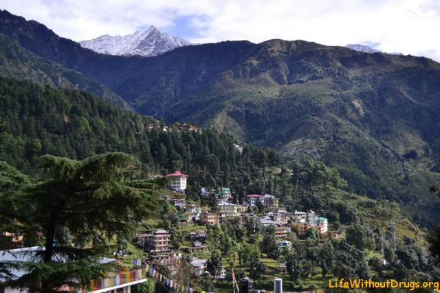 Дхарамсала, Гималаи