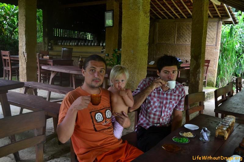 Кофейные плантации на Бали