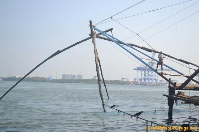 Китайские сети в Кочи, фото