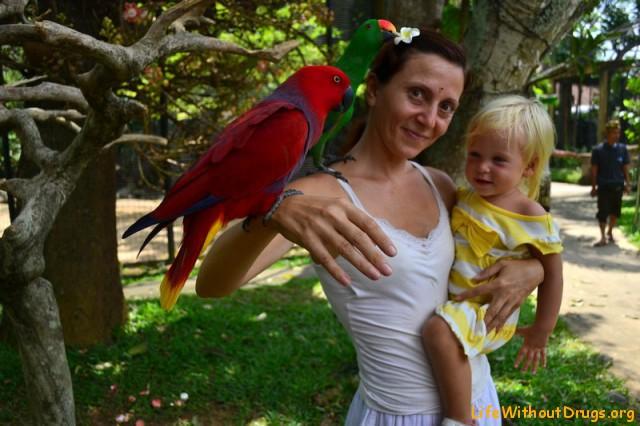 Балийский парк птиц