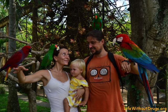 Парк птиц - свободу попугаям!