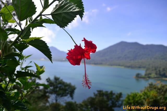 А сверху озеро Буян выглядит очень красиво.
