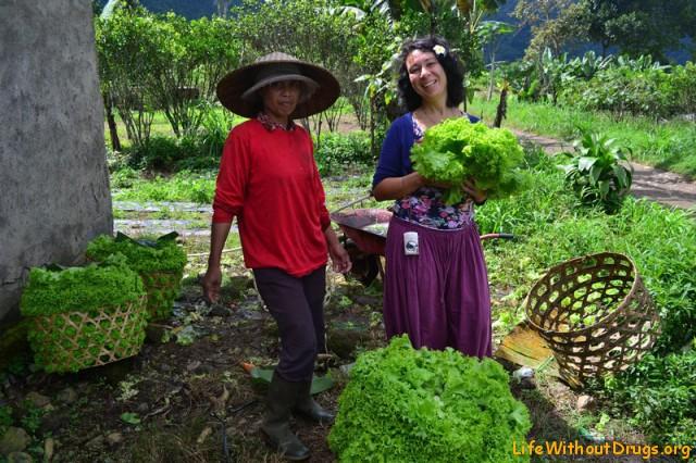 Свежий салат на Бали