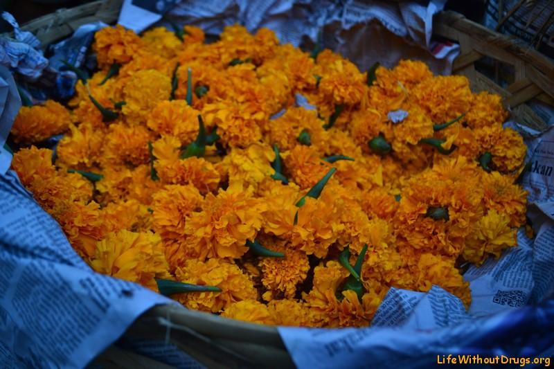 Церемониальные цветы Бали