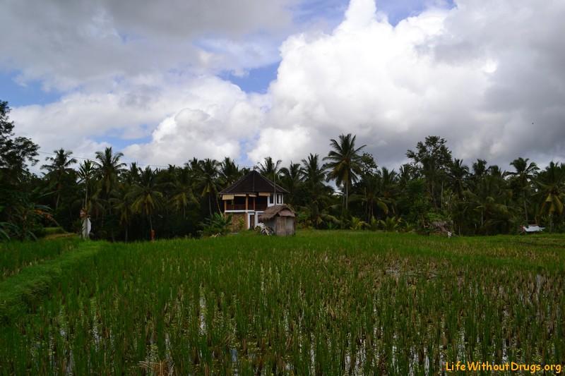Йога дом в Убуде