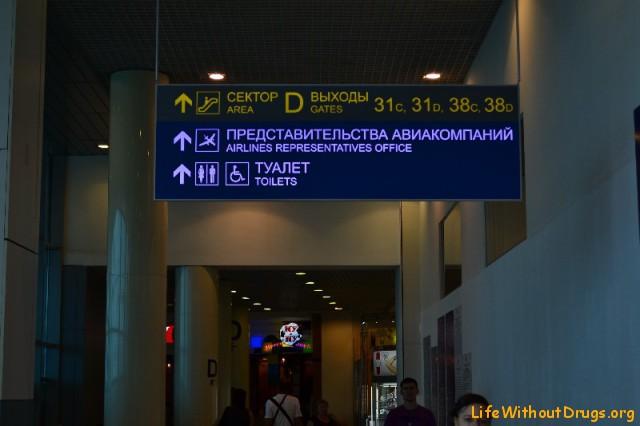 Как добраться до аэропорта Внуково из Москвы на метро