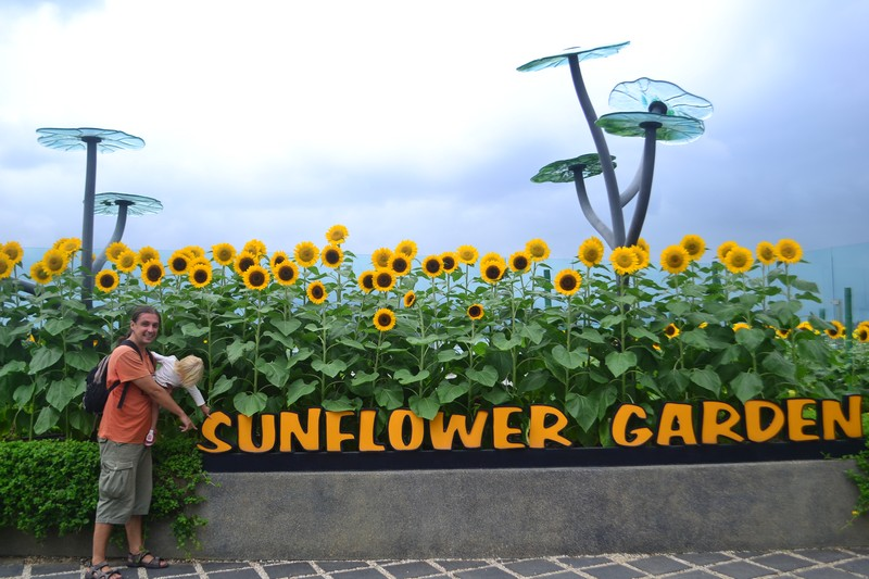 Аэропорт Сингапура фото