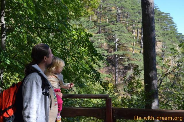 Мы на подъеме на гору Ай-Петри