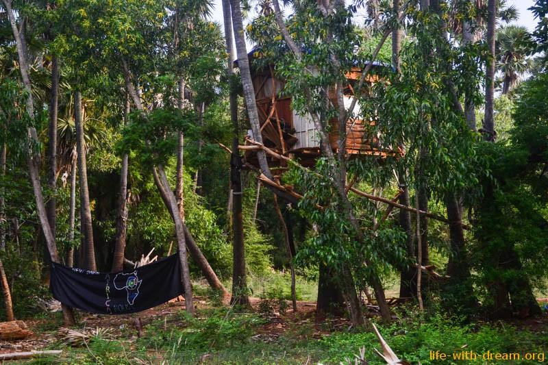 дом на дереве в Ауровиле