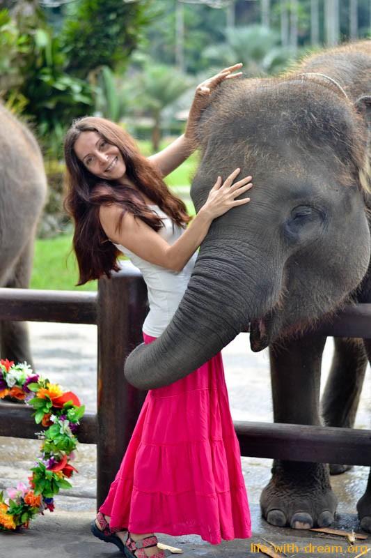 слоны на Бали