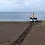 Как добывается морская соль в деревушке Кусамба, на востоке Бали.