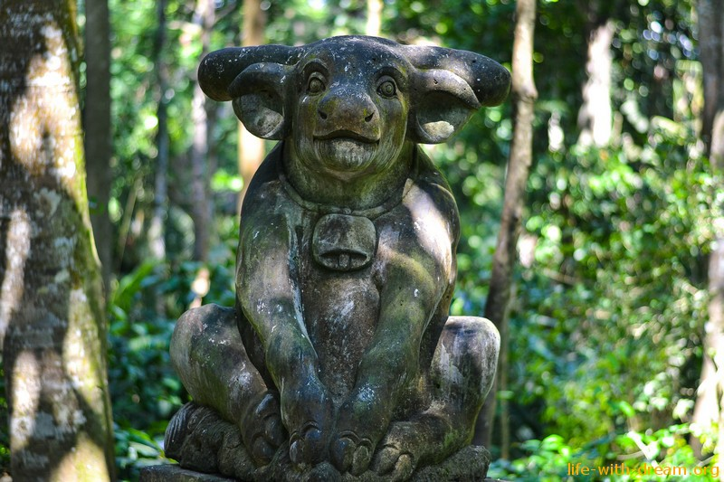 лес обезьян в Убуде
