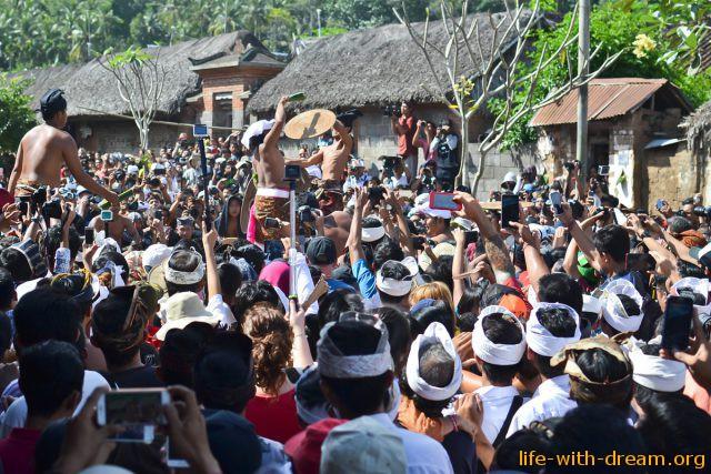 Ритуальные бои в деревне Тенганан и церемония Perang Pandan