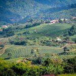 Мае Салонг — чайная деревушка на севере Таиланда. Прогулка.