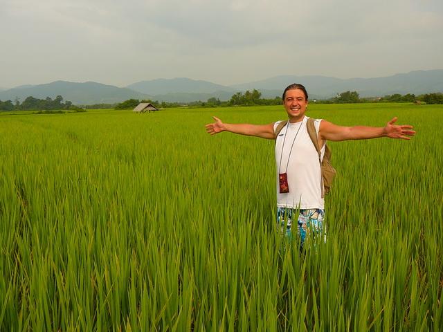 Мы в Луангнамтха - покоряем просторы рисовых полей!