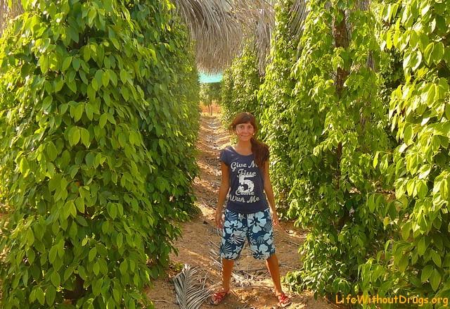 Кеп, Камбоджа