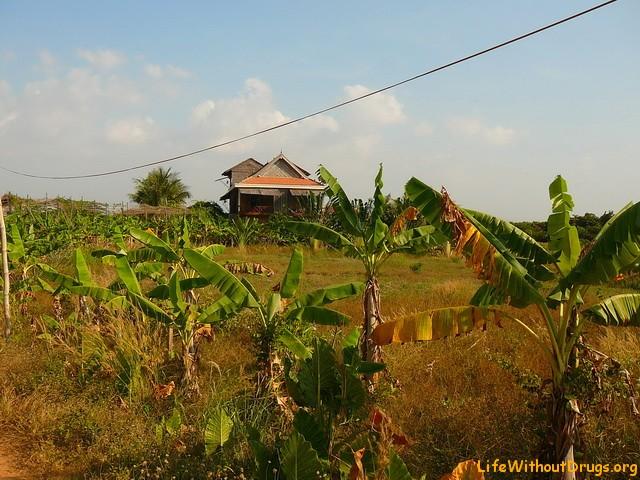 Жилье в Кепе, Камбоджа