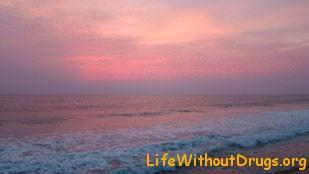Лена Море - за что я люблю Индию