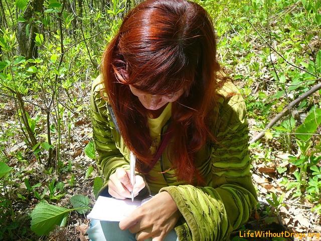 Поиск кладов и тайников - игра геокэшинг