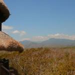 Путешествие вокруг Бали (Часть 4) — Северо-запад острова и Медеви