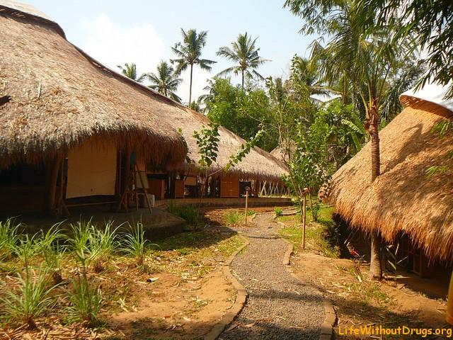 Бали, обучение