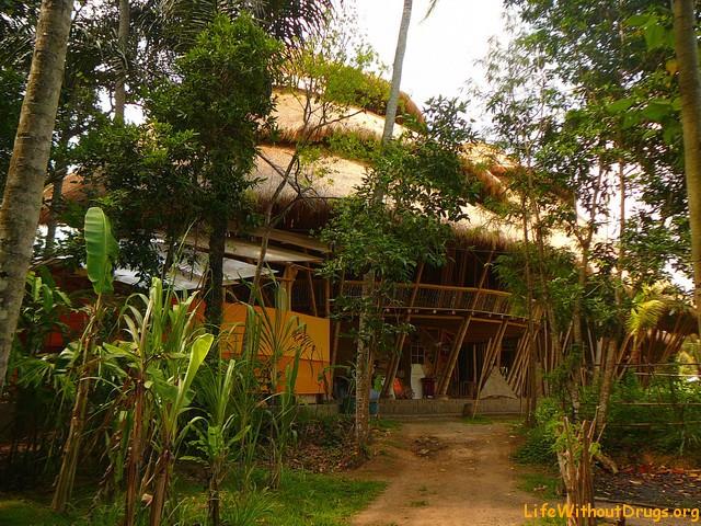 Школа на Бали