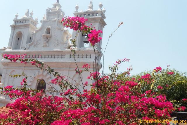 Старый Гоа (Goa), Индия