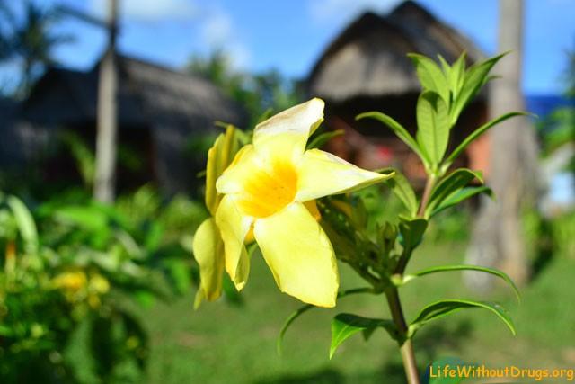 остров Ко Ланта - остров настоящей тишины